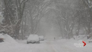 2016 / 2017 Toronto Winter Forecast