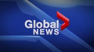Global News at 5 Edmonton: Dec. 8