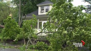 Maritime provinces recovering after tropical storm Arthur