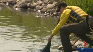 Officials recover boat, still searching for missing Calgary man  on McGregor Lake