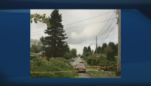Coquitlam Mayor on power outages