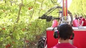 robotic apple picker