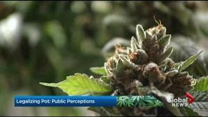 Public perceptions on marijuana