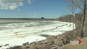 Concerns over water supply at Lac St. Louis