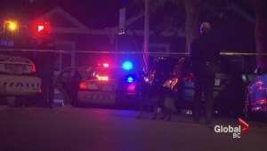 Two hurt in overnight Surrey gun battle