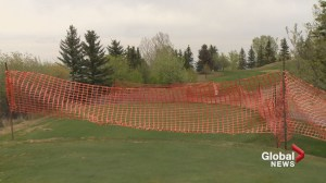 Golf hole at The Hamptons shortened due to homeowner-filed injunction