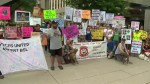 Dozens march downtown as part of anti-BSL protest