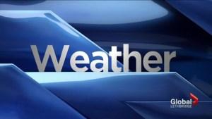Lethbridge Weather: Jan. 19, 2017