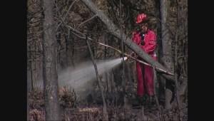 Archive: 2005 Burns Bog fire