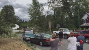 B.C. maintenance workers repairing damage and cleaning up debris after wind storm