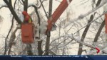 Toronto's Ice Storm One Year Later