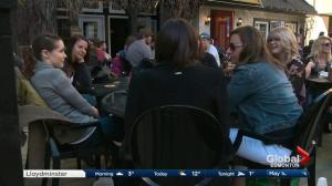 Find the perfect Edmonton patio with the Patio Buzz app