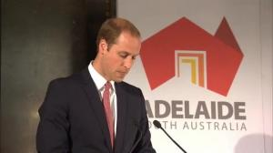 Prince William expresses his sadness over downing of MH17