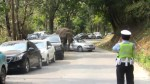 Wild elephant goes on rampage on Chinese highway