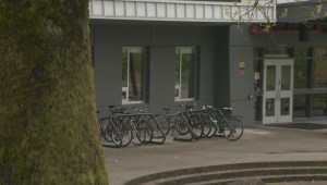 Strong reaction to report on violent incidents involving special needs students