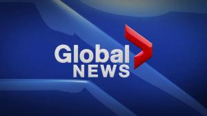Global News at 5 Edmonton: Jan. 19
