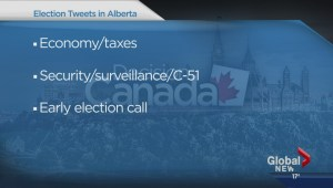 Tracking the federal election trends on Twitter