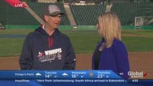 Global's Shannon Cuciz discusses the Winnipeg Goldeyes upcoming season with General Manager