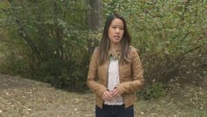 South Okanagan SAR groups receive spike in calls
