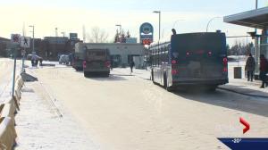 Overhauling Edmonton's transit system