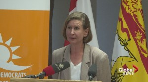 New Brunswick NDP announce new party leader