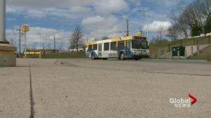 New buses and ferries on horizon with Nova Scotia transit improvement projects