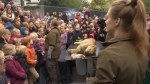 Zoo in Denmark publicly dissects lion in front of large crowd