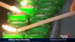 Global News Morning headlines: Monday, February 6