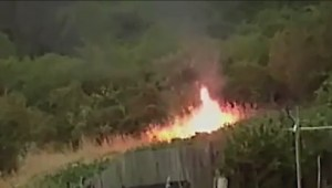 Surveillance video shows Nanaimo arson suspect