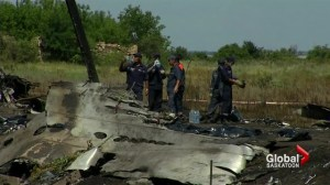 Fallout from the downing of flight MH17
