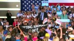 Trump's kids have 'killed a lot of animals': Clinton