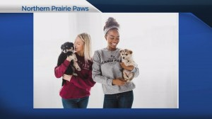 Prairie Paws clothing aiming to support animals in need of help