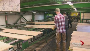 Lumber duties cause significant financial impact at Okanagan forestry company but workers unaffected