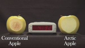 Okanagan residents react to Arctic Apple approval by Health Canada