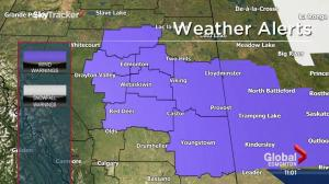 Environment Canada issues wind warning for Edmonton