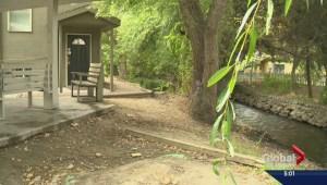 'It's a dangerous situation': needles, human feces left behind in Kelowna neighbourhood