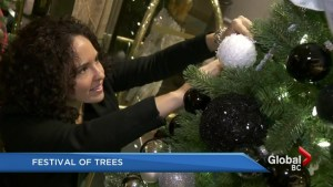 The Annual Festival of Trees is back for the 28th year