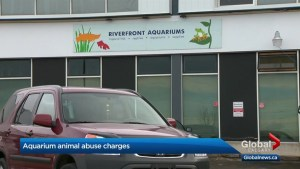 Riverfront Aquariums manager issued historic $20,000 fine following animal seizure