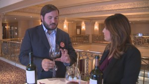 Chilean winemakers work for sustainability
