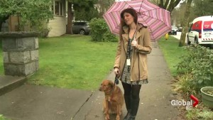 Pet owner demands changes to rental rules
