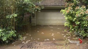 Flooding forces dozens from their homes in West Vancouver