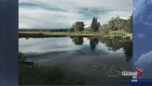 Small Town BC: Burns Lake