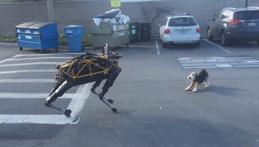 Watch a real dog react to Google's latest robotic dog