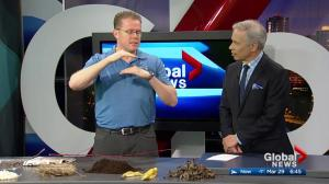 Classic Landscaping: Composting 101