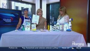 Lice prevention and treatment