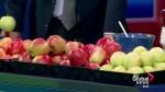 B.C. apples ripe for the tasting