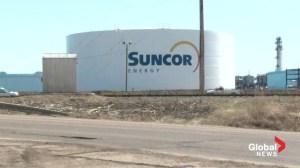 Mandatory wildlife training for Suncor employees