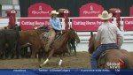 Cutting horse competitions at the Calgary Stampede