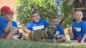 Special kids get up close a personal with LRPS's four legged officers