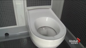 Lethbridge looks at $100k toilet downtown